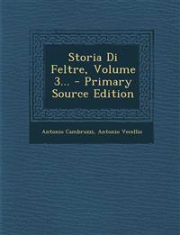 Storia Di Feltre, Volume 3... - Primary Source Edition