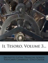 Il Tesoro, Volume 3...