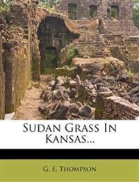 Sudan Grass In Kansas...
