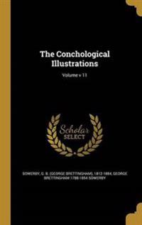 CONCHOLOGICAL ILLUS VOLUME V 1