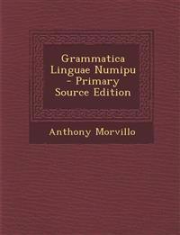 Grammatica Linguae Numipu - Primary Source Edition