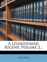 A Lélekidomár: Regény, Volume 2...