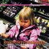 Konsumtionsboken : köpfrossa i en febrig värld