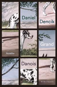 Grand danois