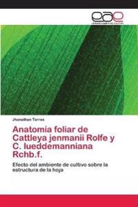 Anatomia Foliar de Cattleya Jenmanii Rolfe y C. Lueddemanniana Rchb.F.