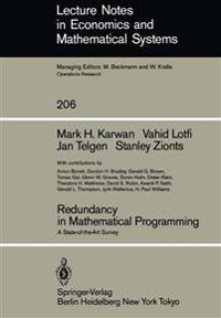 Redundancy in Mathematical Programming