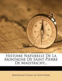 Histoire Naturelle De La Montagne De Saint Pierre De Maestricht...