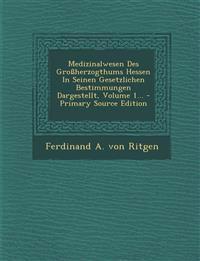 Medizinalwesen Des Grossherzogthums Hessen in Seinen Gesetzlichen Bestimmungen Dargestellt, Volume 1... - Primary Source Edition