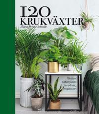 120 krukväxter  skötsel, odlingstips, inredning, inspiration