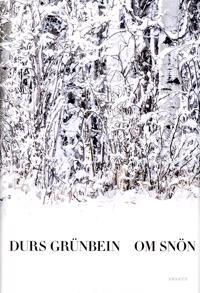 Om snön eller Descartes i Tyskland