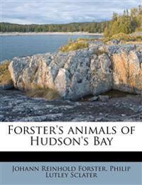 Forster's animals of Hudson's Bay