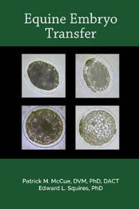 Equine Embryo Transfer