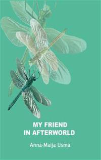 My friend in Afterworld: Experiences in the other reality