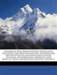 Handbuch Der Gewächskunde: Enthaltend Eine Flora Von Deutschland Mit Hinzufügung Der Wichtigsten Ausländischen Cultur-pflanzen. Phanerogamia, Monoecia