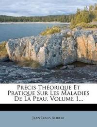 Précis Théorique Et Pratique Sur Les Maladies De La Peau, Volume 1...