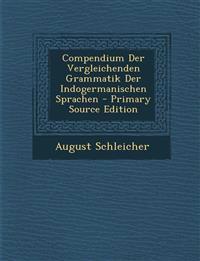 Compendium Der Vergleichenden Grammatik Der Indogermanischen Sprachen - Primary Source Edition