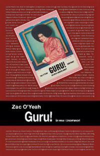 Guru! : en resa i underlandet