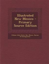 Illustrated New Mexico - Primary Source Edition