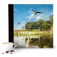 Lyngby-Taarbæk – Flere fragmenter