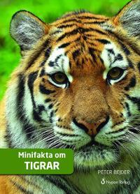 Minifakta om tigrar