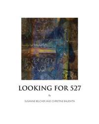 Looking for 527