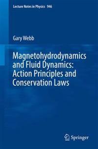 Magnetohydrodynamics and Fluid Dynamics
