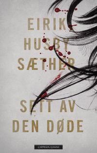 Sett av den døde - Eirik Husby Sæther pdf epub