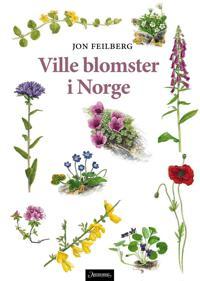 Ville blomster i Norge - Jon Feilberg pdf epub