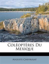 Coléoptères Du Mexique
