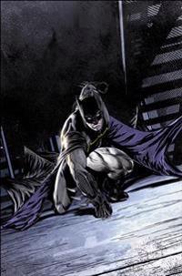 Batman Volume 6