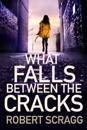 What Falls Between the Cracks