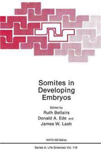 Somites in Developing Embryos