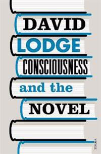 Consciousness And The Novel