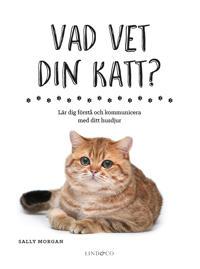 Vad vet din katt? - Lär dig förstå och kommunicera med ditt husdjur