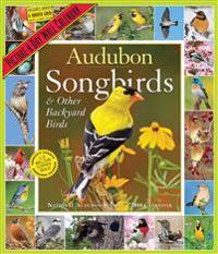 Audubon Songbirds and Other Backyard Birds 2019 Calendar