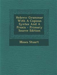 Hebrew Grammar With A Copious Syntax And A Praxis