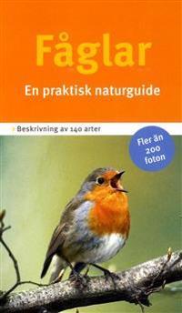 Fåglar : en praktisk naturguide