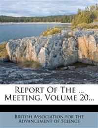 Report Of The ... Meeting, Volume 20...