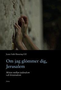 Om jag glömmer dig, Jerusalem : möten mellan judendom