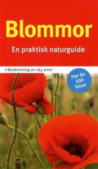 Blommor : en praktisk naturguide