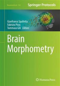 Brain Morphometry