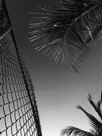 Chris Ofili: Paradise Lost