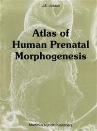 Atlas of Human Prenatal Morphogenesis