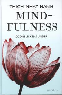 Mindfulness : ögonblickens under