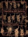 Fågelsång och betong : Mattias Bäcklins konstnärskap