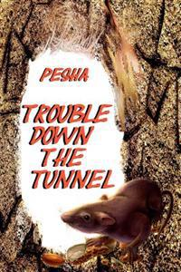 Trouble Down the Tunnel
