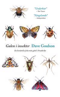 Galen i insekter : Från mitt hus i Frankrike