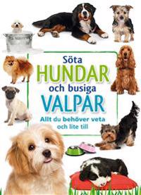 Söta hundar och busiga valpar : allt du behöver veta och lite till