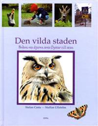 Den vilda staden : boken om djuren som flyttar till stan