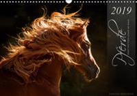 Pferde - Anmut und Stärke gepaart mit Magie (Wandkalender 2019 DIN A3 quer)
